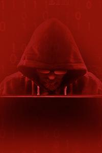 Hacker, Contenido Importante Para Gente Interesada