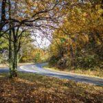 Parque Nacional de Shenandoah | ¿Cómo Lograr Una Comunicación Efectiva?