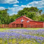Granero Viejo, Ennis Texas